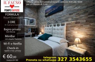 Offerta camera standard 60 euro